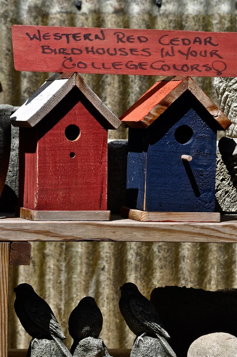 Alabama or Auburn colors, painted on birdhouses I wonder if the birds