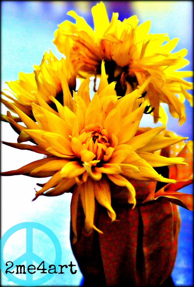 howtobringflowersfromyourgarden