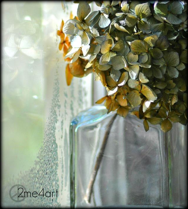 hydrangea & glass