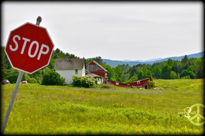 red barn, field of yellow buttercups, blue moutains. Vermont....